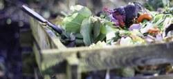 Tous au compost - Recrutement de guides composteurs-pailleurs - Visio-Conférence